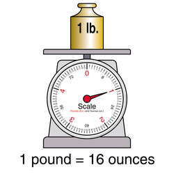 Image result for 1 pound measurement